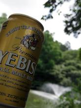 やっぱりビールはヱビス