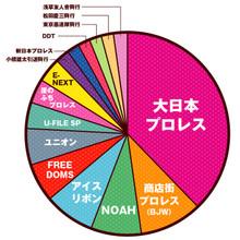 2013年観戦内訳
