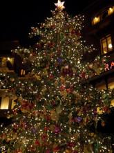 クリスマス一色でした
