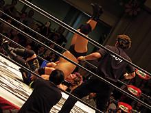 DDT解禁
