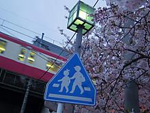 京急線もこの街の風景の一部