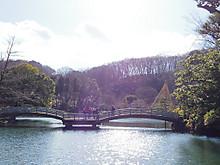 日本庭園的な