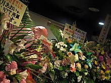 お花もいっぱい