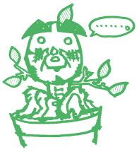 もし植物に感情があったのなら…