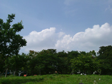osanpoといえば西郷山公園
