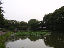 まったーり池