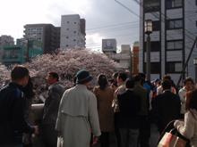 日本人は写真大好き