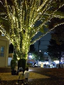 Kannge1911_rakura03